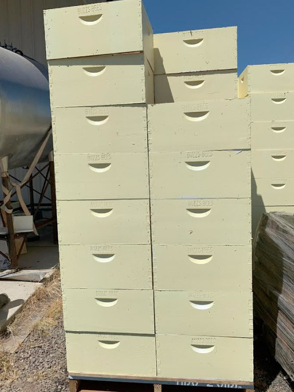 Buzz's Bees, Northern Ca - Bee Boxes
